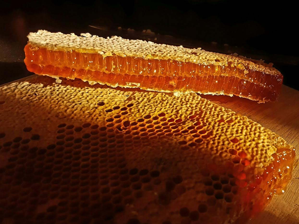 Antibacterial Honey